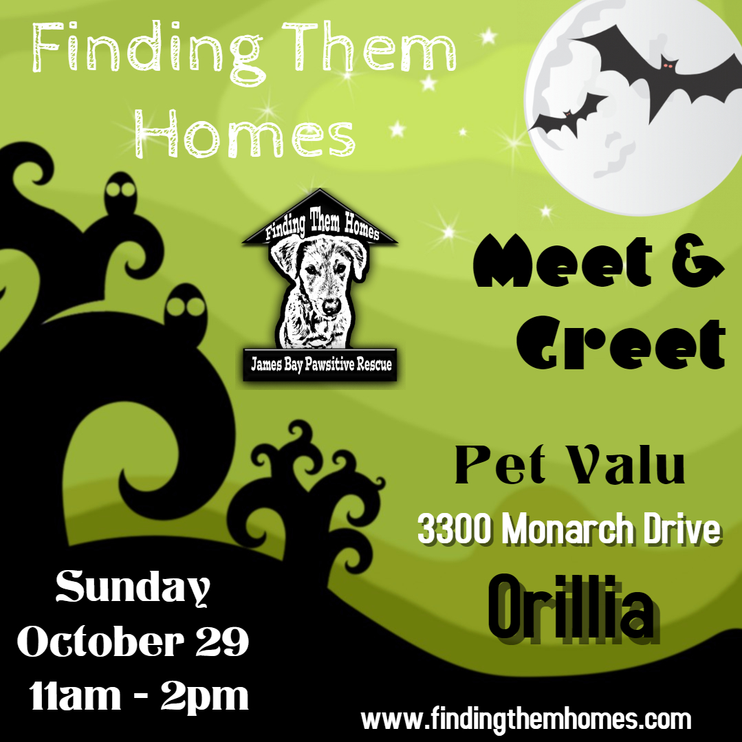 Orillia Meet & Greet
